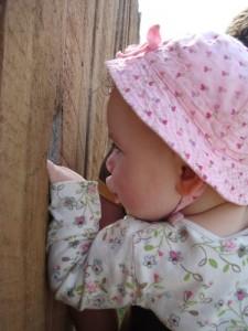 Toddler girl peeking through a fence