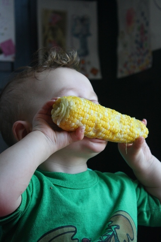 toddler eating sweetcorn on the cob