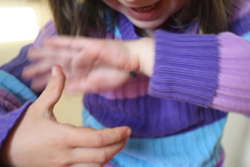 girl holding a wood bug and laughing