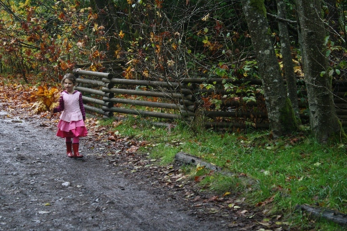 girl on an autumn walk