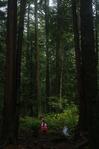 big trees little girls
