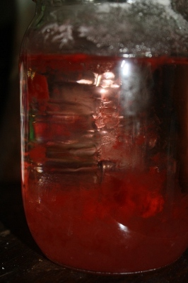 growing washing soda crystals