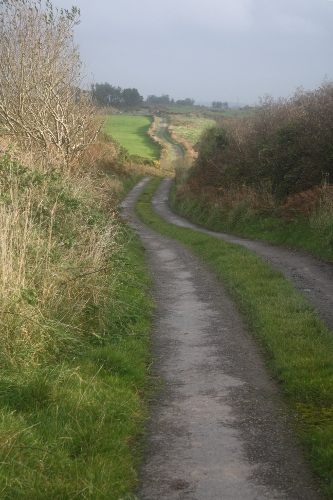irish country lane